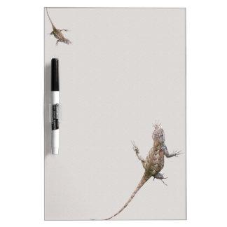 Clinging Eastern Fence Lizards Dry-Erase Board