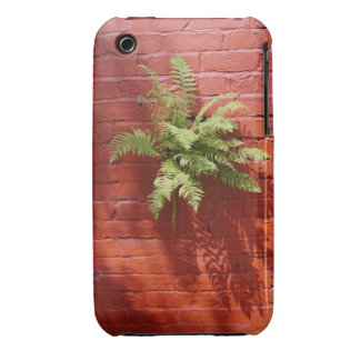 Clinging On Fern 3/3GS iPhone 3 Cases