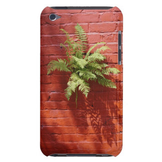 Clinging On Fern iPod Touch Case