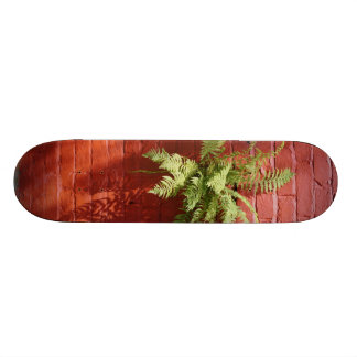 Clinging On Fern Skateboard