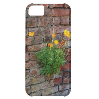 Clinging On Poppy iPhone 5 Cover For iPhone 5C