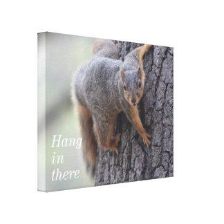 Clinging Squirrel Gallery Wrapped Canvas