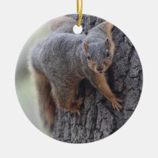 Clinging Squirrel Ceramic Ornament