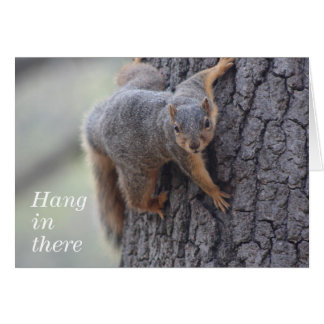 Clinging Squirrel Greeting Card
