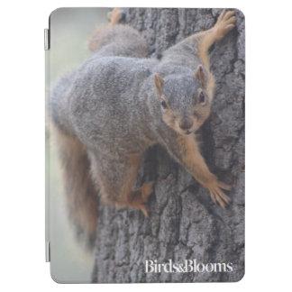 Clinging Squirrel iPad Air Cover