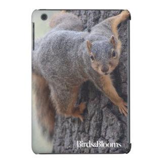 Clinging Squirrel iPad Mini Case
