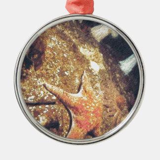 Clinging Starfish Metal Ornament