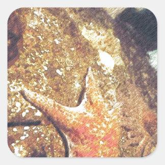 Clinging Starfish Square Sticker