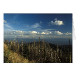 Clingman's Dome Great Smoky Mountains Card