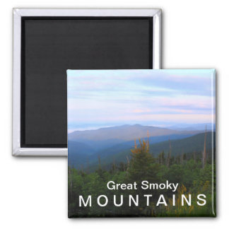 Clingmans Dome overlook - Great Smoky Mountains Magnet
