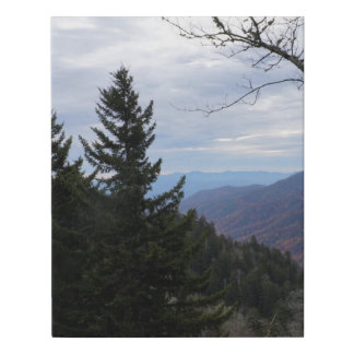 Clingmans Dome Smoky Mountains Tennessee Faux Canvas Print