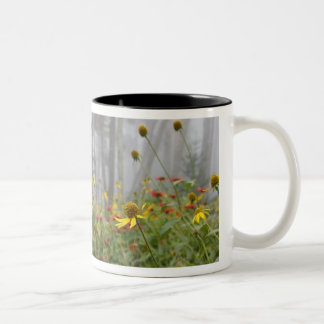 Clingmans Dome Wildflower Mug