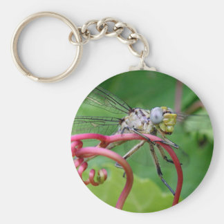 Clingy - dragonfly keychain