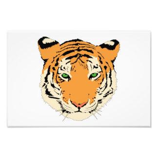 Clip art del tigre fotografía