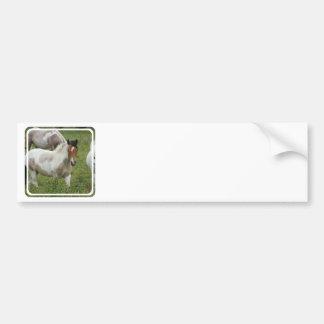 Clipped Paint Horse Bumper Sticker