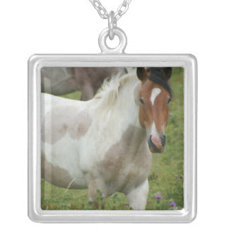 Clipped Paint Horse Necklace
