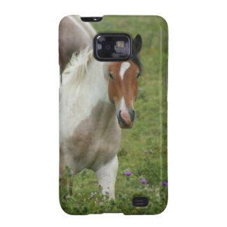 Clipped Paint Horse Samsung Galaxy Case Samsung Galaxy SII Covers