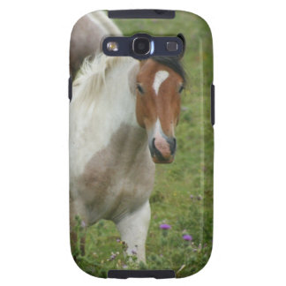 Clipped Paint Horse Samsung Galaxy Case Samsung Galaxy SIII Covers