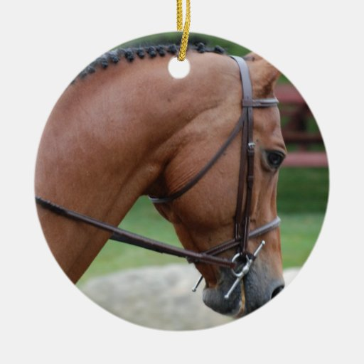 Clipped Pony Ornament