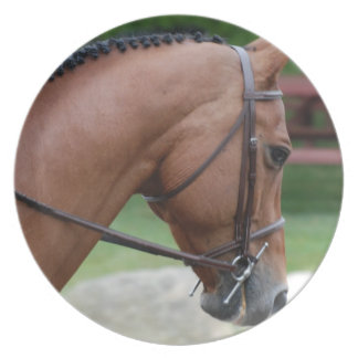 Clipped Pony Plate