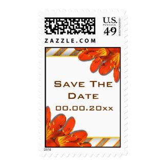 Clivia del país del boda del rojo anaranjado sellos
