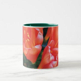 Clivia Flower Two-Tone Coffee Mug
