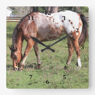 Clock, Appaloosa Horse Square Wall Clock