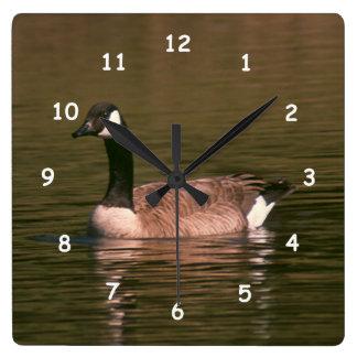 Clock - Canadian Goose
