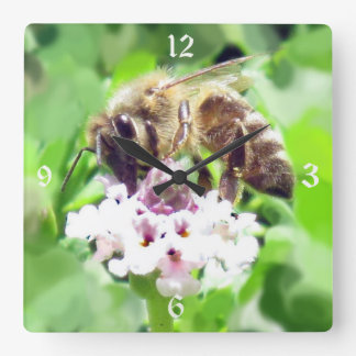 Clock - Honey Bee