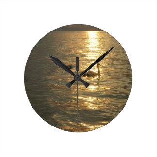 clock lake Balaton swan