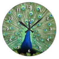 Clock - Peacock tailfeathers