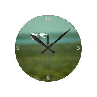 Clock - Tern in flight