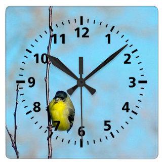 Clock - Yellow Finch