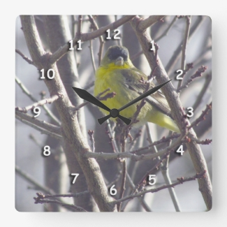 Clock - Yellow Finch in Branches