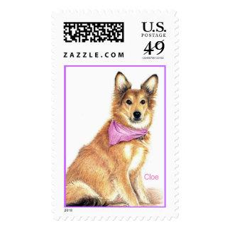 Cloe Stamp