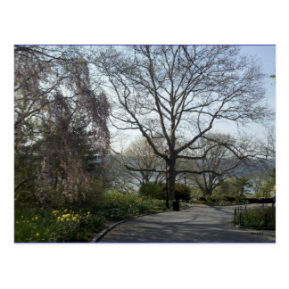 Cloisters Gardens #9 Postcards