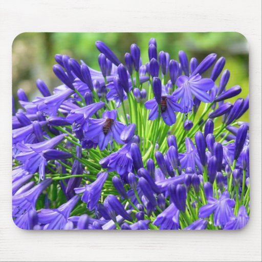Close Purple Flower in Bloom with Bees Mouse Pad