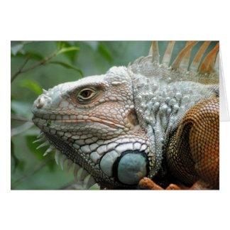 Close to the Iguana Greeting Card