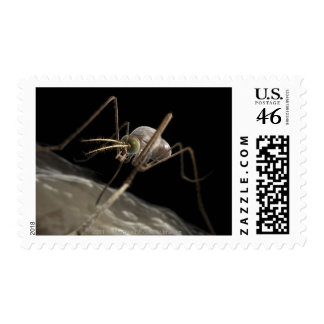 Close up 3d mosquito biting postage stamps