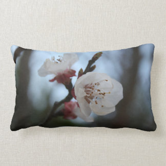Close Up Apricot Blossom In Pastel Shades Pillow