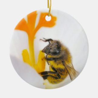 Close Up - Bee In A Crocus Blossom Christmas Ornaments