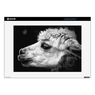 Close Up Black and White Portrait of an Alpaca Decal For Laptop