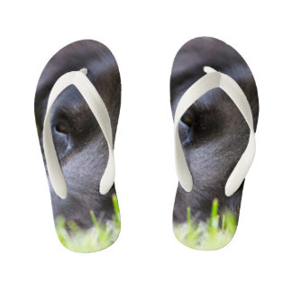 Close Up Black old dogs face with selective focus Kid's Flip Flops