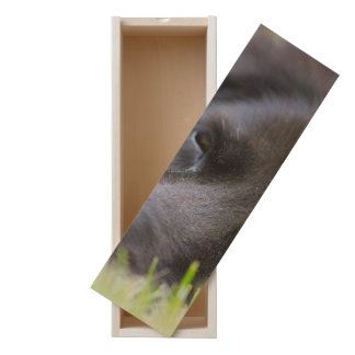Close Up Black old dogs face with selective focus Wooden Keepsake Box