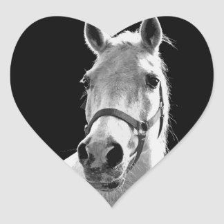 Close-up Black White Horse in Night Heart Sticker