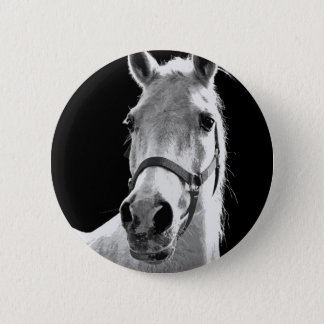 Close-up Black White Horse in Night Pinback Button