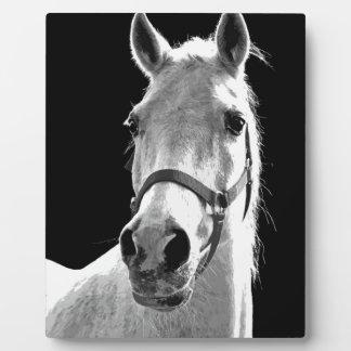 Close-up Black White Horse in Night Plaque