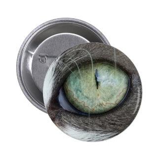Close Up Cat's Eye Button