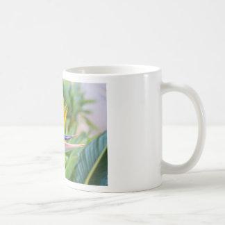 Close up Crane flower or Strelitzia reginaei Coffee Mug