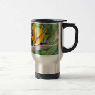 Close up Crane flower or Strelitzia reginaei Travel Mug